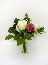 Pink and Cream Artificial Silk Rose Bundle
