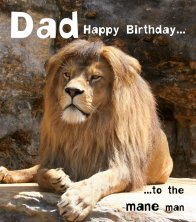 Silly Zoo Dad Mane Man Birthday Greetings Card