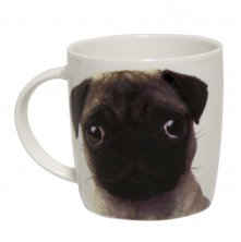 Best of Breed Pug Mug - All You Need Is Love and A Pug
