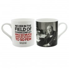 Words of Winston Mug Never in the Field