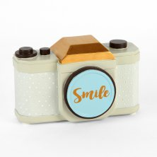 Vintage Boutique Camera 'Smile'  Money Box