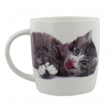 Best of Breed Cat Mug - Meow!