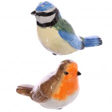 Robin and Blue Tit Birds Salt & Pepper Pots