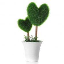 Topiary Double Heart
