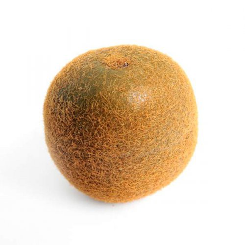 Kiwi Artificial Fruit